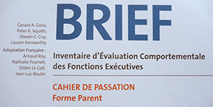 Laure Blanvillain, neuropsychologue, psychomotricienne, enfant, adolescent, Angers, Trélazé, outils, bilan, phase,  tests